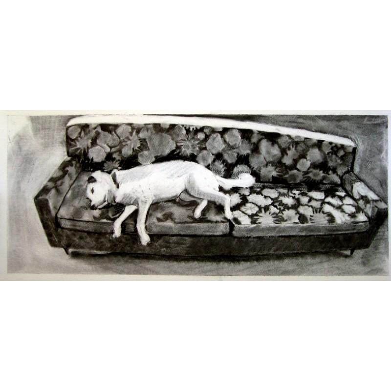 Kali on Gail's sofa